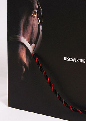 The Racing Club – Discover The Lead To Victory (Corporate Brochure)