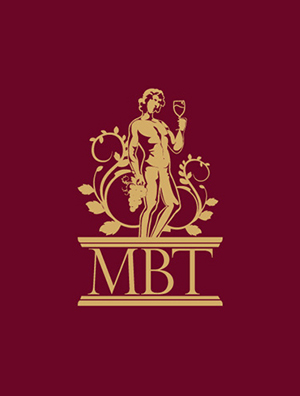 MBT International Limited  (Branding, Visual Identity & Logo System Design)